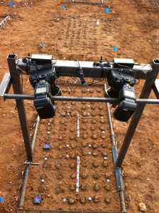 3D phenotyping rig